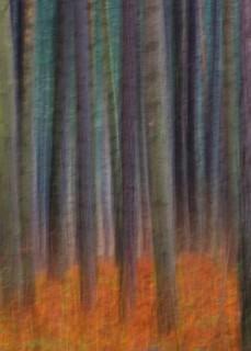 blur ~ HSS