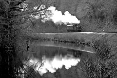 On Reflection (*Firefox) Tags: reflection dart riverdart gwr collett greatwesternrailway 1450 canonef100400mmf4556lisusm southdevonrailway 14xx 042t canoneos5dmarkii 1400class