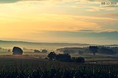 DSC_0048n wb (bwagnerfoto) Tags: morning regly dawn pacsmag landscape landschaft tjkp hajnal kd fog trees nebel hills dombok mystic nature outdoor mist
