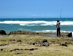 (d_botelho) Tags: mangue manguetown nacaozumbi sabiaguaba risoflora caranguejo fortaleza ceara brazil maguezais praia pescador