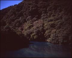 (bensn) Tags: mamiya 7ii 80mm f4 film medium format velvia 50 6x7 japan gunma river water trees mountains