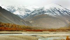 Yasin Valley (NotMicroButSoft (Fallen in Love with Ghizar, GB)) Tags: yasinvalley ghizar darkoot karombar baltistan pakistan nature autum gilgitbaltistan