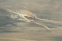 Long-billed cloud bird, sun dog and parakeets (Sculptor Lil) Tags: canon700d dslrsingleexposure london atmosphericoptics clouds sky sundog weather