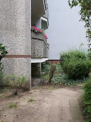Die Blumen. / 22.08.2016 (ben.kaden) Tags: berlin prenzlauerberg ellakaystrase waschbeton blumen plattenbau architekturderddr 2016 22082016
