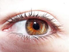 Eye HSS :) (aapfarrington) Tags: sliders sunday sliderssunday hss eye orange bright saturation contrast brightness photoshopped pupil iris eyelashes skin macro human