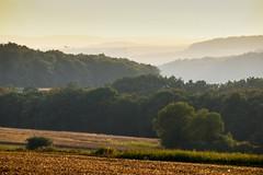 Shimmering Dust (Claudia G. Kukulka) Tags: hills hgel trees bume fields felder sunset sonnenuntergang oberaltertheim