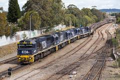 "2016-08-27 Pacific National 8236-8201-8254-8257 Port Waratah TM84 (Dean ""O305"" Jones) Tags: mayfieldeast newsouthwales australia au 8236 8201 8254 8257 tm84 coal train pacific national port waratah nsw"