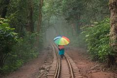 Matheran-4860 (Satish Chelluri) Tags: satishchelluri satishchelluriphotography matheran maharastra umbrella mansoon