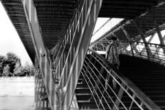 PARCELLE 16-034_01 (gyjishukke) Tags: analog argentique monochrome pont passerelle paris carreaux clairevoie chemisette structure ombre ilford delta400 800iso selfdevelopment scanlowdef hc110b 10 20 minoltax700 50mm bw