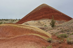 DSC_8783Painted Hills.jpg (billheadphotography) Tags: events oregonwashingtontrip paintedhills places