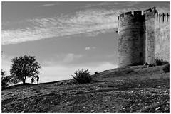 Au pied du fort (Pascal.M (bong.13)) Tags: fort saint andr villeneuve les avignon gard france provence pierre noiretblanc blackandwhite nikon d3200