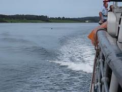3917 MV Balmoral wash (Andy panomaniacanonymous) Tags: 20160907 bbb boat cruise menaistraits mmm motorvessel mvbalmoral roundtrip ship sss vvv ynysmon