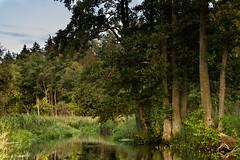 IMG_4071 (figoosia) Tags: supral rzeka river chmury