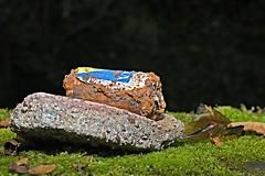 Stillleben an der Pader 12 (DianaFE) Tags: dianafe dianae stillleben mll makro abfall mllkunst tiefenschrfe schrfentiefe