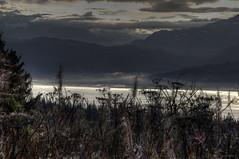 20160925_05 (tpeters2600) Tags: alaska katchemakbay moring autumn fall autumninalaska canon eos7d tamronaf18270mmf3563diiivcldasphericalif hdr photomatix landscape outdoors scenery