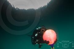 _MG_0998 (zadok priest) Tags: uk england water wales canon eos ds scuba diving fresh tokina 7d diver mm chepstow dir 1017 125 ndac ikelite