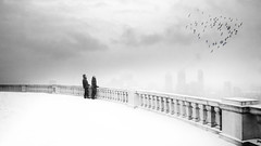 on top of the World (marianna armata) Tags: city winter two bw panorama canada love birds fog composite fence couple view heart montreal monochromatic lookout québec r vista friday psd mtroyal hff mariannaarmata