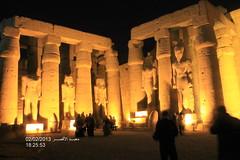 -31-1-3-2-2013 555 (Dr .hossam Abdel Aziz) Tags: