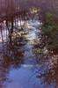 dutch winter (3) (bertknot) Tags: winter reflections reflecting mirror dutchwinter mirroring weerspiegeling dewinter winterinholland reflecties weerspiegel winterinthenetherlands hollandsewinter winterinnederlanddutchwinter