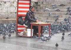 Eminonu, Istanbul, Turkey (east med wanderer) Tags: turkey pigeons turkiye istanbul ottoman turchia eminonu turkei yenicamii newmosque