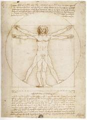 L'homme de Vitruve (Renaissance-Leonard de Vinci) Tags: de dessin des leonard vinci renaissance étude proportions lhomme vitruve
