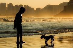 Water Drops on Burning Rocks (Edward Zulawski) Tags: ocean street boy sea dog chien sun art sol praia beach nature water silhouette gua fun soleil eau play arte artistic outdoor natureza garoto playa perro cachorro rua plage menino guaruj silhueta artstico abigfave brasilemimagens