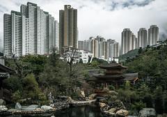 Serenity (skweeky ) Tags: garden peace hong kong serenity kowloon nam lian