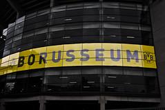 Borusseum (aarbø) Tags: black yellow nikon gelb 09 mm nikkor dortmund schwarz vr dx bvb 18105 borussia colorkey d90 blinkagain