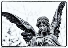 The Angel (.Markus Landsmann) Tags: sky blackandwhite bw statue angel germany deutschland pentax bokeh himmel sigma kln explore sw engel hdr sigma70300 photomatix schwarzweis sigmaapo70300 k20d pentaxk20d mlphoto mlphoto markuslandsmannzenfoliocom markuslandsmann mlandsmann