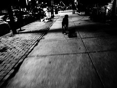 . (hornbeck) Tags: street blackandwhite bw boston theend streetphotography
