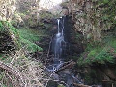 Fairlie Glen Waterfall (TACT_Yesterd@ys) Tags: heritage history woodland waterfall falls yesterdays tact ayrshire fairlie northayrshire fairlieglen northayrshirecouncil yesterdys theayrshirecommunitytrust