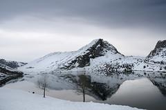 Lago Enol (elosoenpersona) Tags: park parque españa lake snow mountains water de lago spain agua europa nieve asturias reflect national reflejo enol nacional picos mirrir elosoenpersona