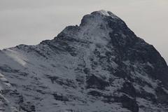 Mittellegigrat des Eiger ( Berg - Mountain in den Alpen - Alps ) im Berner Oberland im Kanton Bern in der Schweiz (chrchr_75) Tags: hurni christoph schweiz suisse switerland svizzera suissa swiss kantonbern chrchr chrchr75 chrigu chriguhurni chriguhurnibluemailch 1303 märz 2013 hurni130316 winter hiver schnee snow neige alpen alps eiger bergeiger albumeiger berg mountain switzerland märz2013 berner oberland
