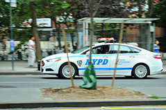 Cruising cruiser (Throwingbull) Tags: new york city nyc urban ny cops police nypd cop hero law heroes enforcement department officer finest dept officers