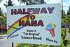 HALFWAY TO HANA (8mr) Tags: roadtohana maui hawaii 808 hawaiian beach hana bokeh shark waianapanapa kaanapali kihei makena bigbeach haleakala wailea bamboo forest mothernature natural earth greenery lush islandlife shavedice road