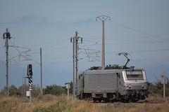 BB 27168 VFLI / Loon-Plage (jObiwannn) Tags: train fret ferroviaire locomotive prima