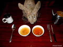 Dr. Takeshi Yamada and Seara (Coney Island Sea Rabbit) at the East Ocean Buffet Chinese restaurant in Brooklyn, NY on April 3, 2016.  20160403Sun DSCN4947=0025C. healthy chicken soup, shark fin soup (searabbits23) Tags: searabbit seara takeshiyamada  taxidermy roguetaxidermy mart strange cryptozoology uma ufo esp curiosities oddities globalwarming climategate dragon mermaid unicorn art artist alchemy entertainer performer famous sexy playboy bikini fashion vogue goth gothic vampire steampunk barrackobama billclinton billgates sideshow freakshow star king pop god angel celebrity genius amc immortalized tv immortalizer japanese asian mardigras tophat google yahoo bing aol cnn coneyisland brooklyn newyork leonardodavinci damienhirst jeffkoons takashimurakami vangogh pablopicasso salvadordali waltdisney donaldtrump hillaryclinton polarbearclub