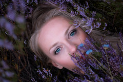 Tale of The Forest Fairy (veldreannija) Tags: fairy forest woods purple flowers blue eyes blueeyes autumn fall magic fineart fineartphotography art annija artist annijaveldre
