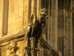 Gothic wyvern (2) (Szymek S.) Tags: dragon wyvern gargoyle church cathedral minster yorkminster architecture gothic town oldtown york yorkshire england greatbritain unitedkingdom