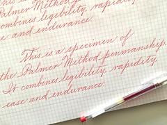 IMG_4525 (xelo garrigs) Tags: calligrafia caligrafa calligraphy penmanship spencerian pilot pointedpen ornamentalscript