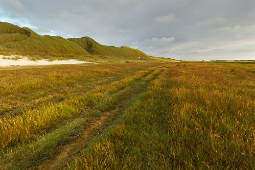 "Trail in to ""hilly grass - dunes"""