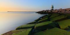Laagwater (zsnajorrah) Tags: nature rural industrial sea shore pier lighthouse beacon moss sky goldenhour sunset wideangle ultrawideangle uwa nd ndfilter neutraldensityfilter x3nd10 longexposure 7dmarkii efs1018mm netherlands ijmuiden zuidpier