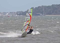 Aug20271a (Mike Millard) Tags: hamworthypark pooleharbour windsurfers