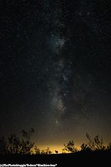 Joshua Tree - 08.06.2016 (Kimihiro-kun) Tags: joshuatree national park astrophotography longexposure milkyway galaxy landscape california