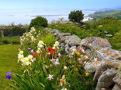 Summer's Walk (Alan Wiltcher) Tags: summer walk flowers view islands coast