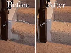 14 Carpet patch repair on the bottom staircase Austin Round Rock Cedar Park Manor Bee Cave San Marcos (Carpet Repair) Tags: austincarpetrepair cedarparkcarpetrepair roundrockcarpetrepair pflugervillecarpetrepair sanmarcoscarpetrepair westlakehillscarpetrepair wimberleycarpetrepair suncitycarpetrepair driftwoodcarpetrepair georgetowncarpetrepair drippingspringscarpetrepair kylecarpetrepair laketraviscarpetrepair lakewaycarpetrepair leandercarpetrepair manorcarpetrepair onioncreekcarpetrepair bartoncreekcarpetrepair budacarpetrepair carpetrepair repaircarpeting carpetrepaircost carpetrepairservice carpetrepaircompanies professionalcarpetrepair carpetdamagerepair carpetrepairspecialist repairingcarpetdamage cancarpetberepaired canyourepaircarpet carpetrepairaustintx fixingcarpet carpetfixing fixcarpet carpetpatching patchingcarpet carpetpatch patchcarpet carpetpatches patchacarpet carpetpatchingcost carpetpatchingservice carpetrepairpatch repaircarpets carpetpatchrepair canyoupatchcarpet repairingcarpetpatch patching patch patchwork repair austin kyle lakeway buda cedarpark roundrock sanmarcos beecave snag tears tear torn fraying frayed unraveling hole dog cat