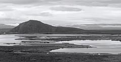 Myvatn Lake - Iceland (Ste Cube) Tags: paesaggio land nature natura biancoenero bw myvatn lago lake islanda iceland