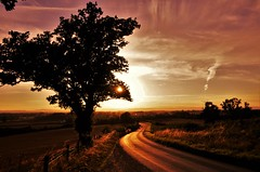 Into the sunset (Sundornvic) Tags: sunset sun road tree path way light sky clouds pentaxart shining shropshire