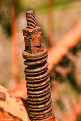 Rusty Spring (Thad Zajdowicz) Tags: spring iron steel rust bolt nut screw oxidation metal farmequipment old antique bokeh depthoffield dof outside outdoor gaithersburg maryland montgomerycounty zajdowicz 366 365 availablelight lightroom color diagonal canon eos 7d dslr digital texture