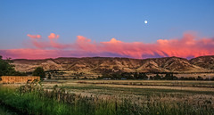 Afterglow (http://fineartamerica.com/profiles/robert-bales.ht) Tags: gemcounty haybales idaho landscape misc people photo places scenic states sunrisesunset sunset sunrise yellow landscsape mountain morning twlight panoramic emmett sweet squawbutte farm rollinghills idahophotography treasurevalley clouds organe emmettvalley emmettphotography trees sceniclandscapephotography thebutte canonshooter beautiful sensational awesome magnificent peaceful surreal spiritual inspiring afterglow wow stupendous superb tranquil butte robertbales iphone hdr glow